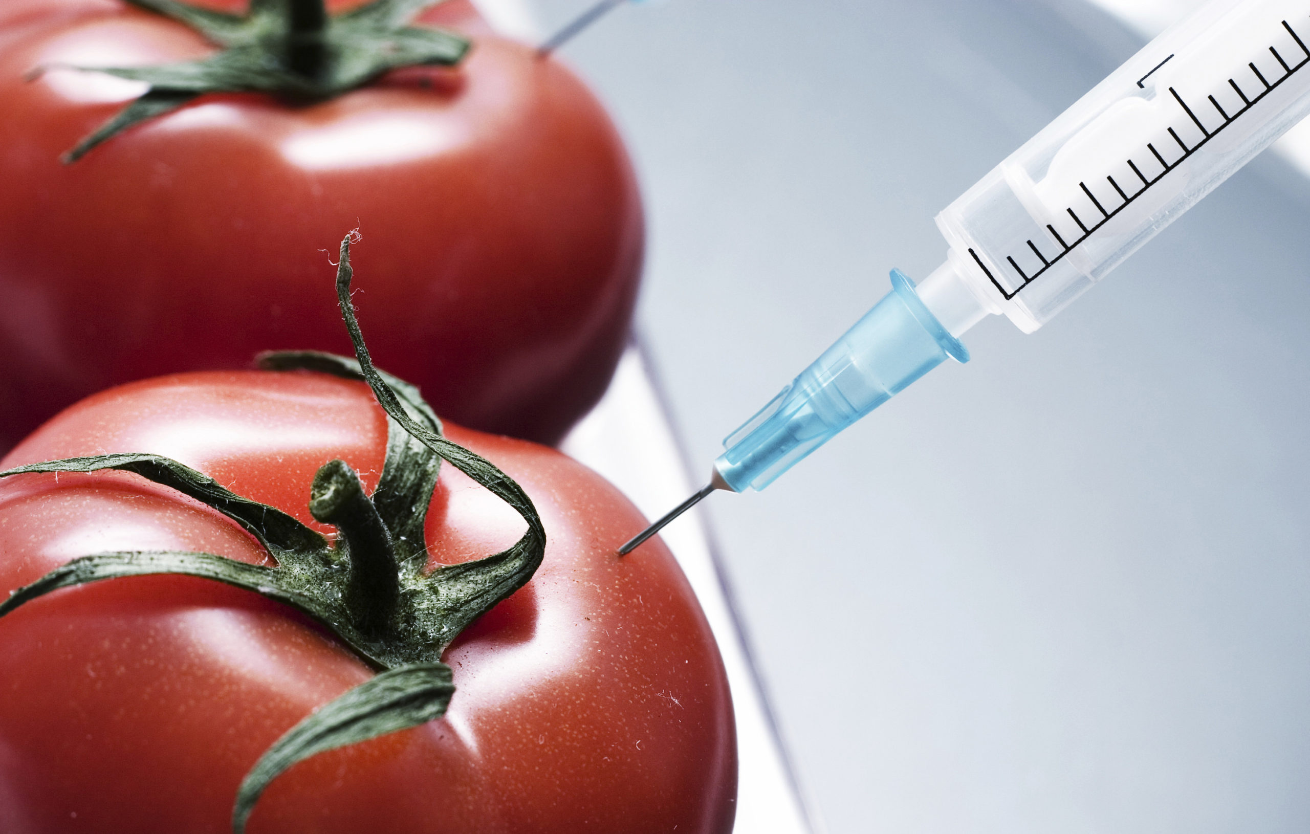 МИВТ предложил создать национальную базу генномодифицированных продуктов
