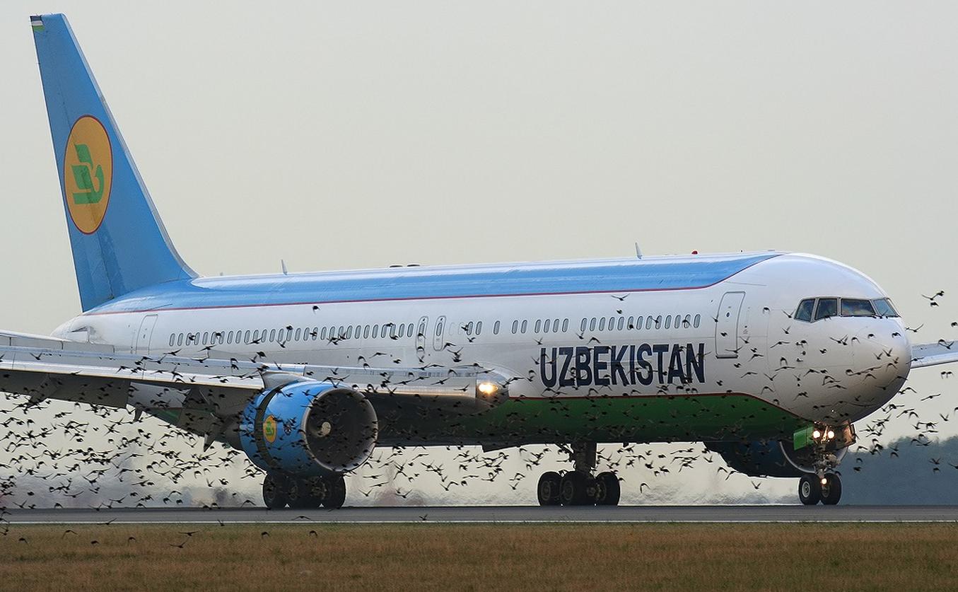 Запущена онлайн-система подачи заявок на чартерные рейсы