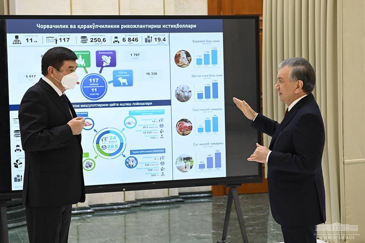 В новые бизнес-проекты Каракалпакстана вложат $887 млн