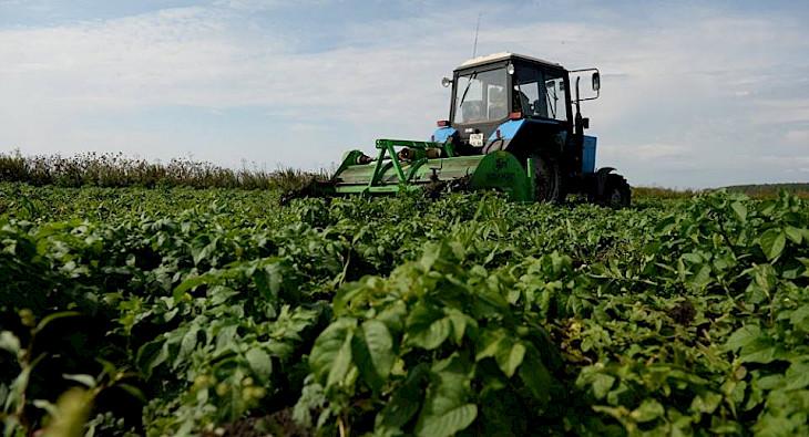 Узбекистан планирует арендовать до 1 млн га земель в России